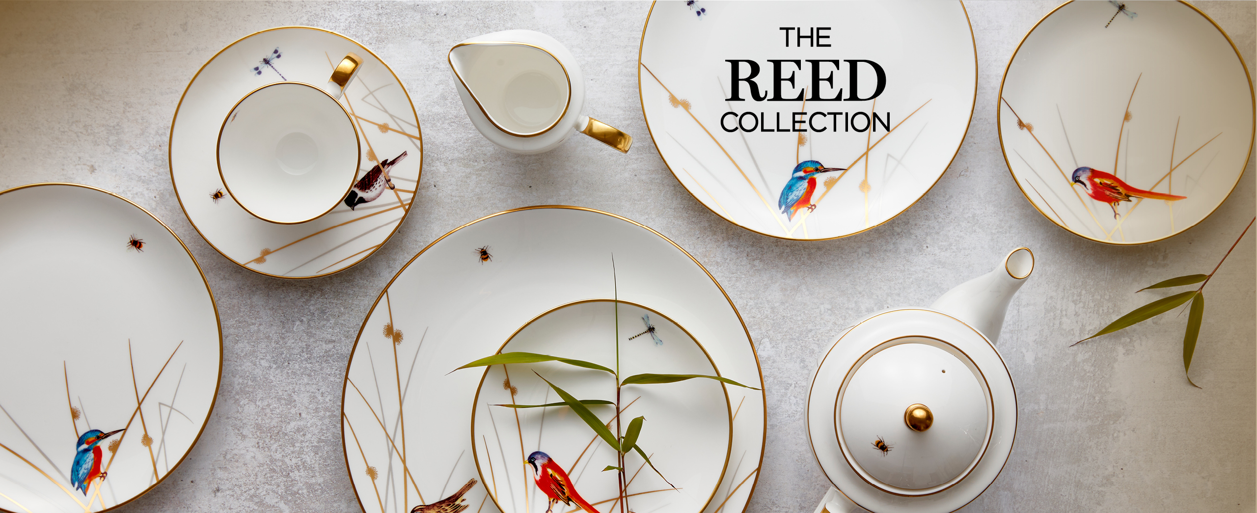 selection of Reed bone china plates with a cup